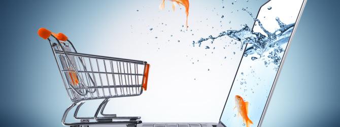 В 2018 году несколько крупных игроков продуктового рынка выйдут в онлайн