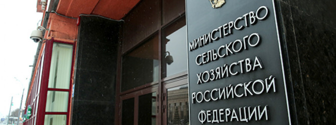 Директором Департамента пищевой и перерабатывающей промышленности Минсельхоза назначена Марина Афонина